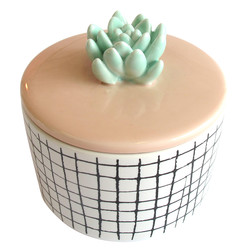 House of Disaster Urban Garden Succulent Jar