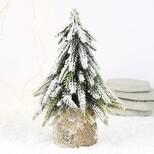 Snowy Fir Tree Decoration