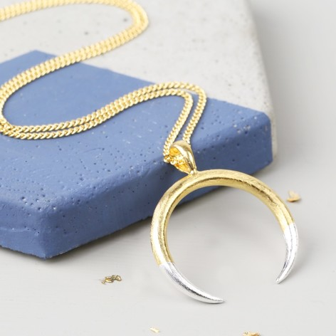 Long Gold Dipped in Silver Horn Necklace