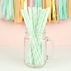 Pack of 25 Mint and White Stripe Paper Straws