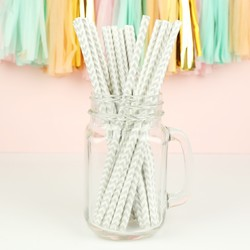 Pack of 25 Silver Zig Zag Paper Straws
