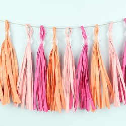Meri Meri Pastel Pink Party Tassel Garland