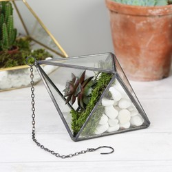 Sass & Belle Black Diamond Hanging Terrarium