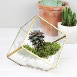 Sass & Belle Brass Cube Terrarium