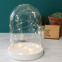 30 Battery Powered LED Silver Wire String Lights