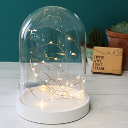 30 Battery Powered LED Copper Wire String Lights