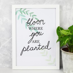 'Bloom Where You are Planted' A4 Typography Print