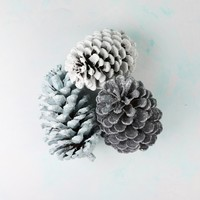Set of 3 Frosted Glitter Pinecones