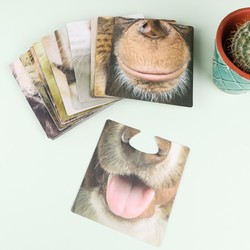 Party Animals Face Mats Coasters