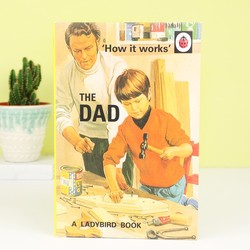 'How it Works: The Dad' Ladybird Book