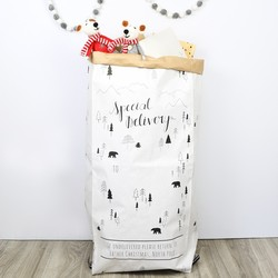 Special Delivery Christmas Sack