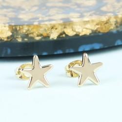 Shiny Star Stud Earrings in Gold