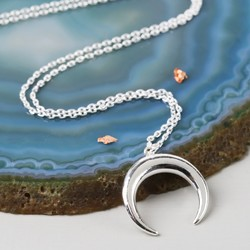 Silver Horn Pendant Necklace