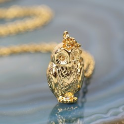 Estella Bartlett Gold Owl Necklace
