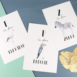 Illustrated Animal Alphabet A4 Print