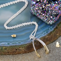 Silver Dipped in Gold Wishbone Necklace