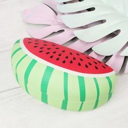 Sass & Belle Tropical Watermelon Glasses Case