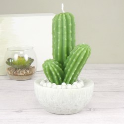 Large Botanical Cactus Candle