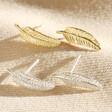 Lisa Angel Delicate Feather Stud Earrings